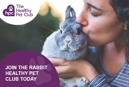 Join The Healthy Pet Club for rabbits